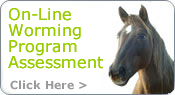 On Line Worming Program Assessment